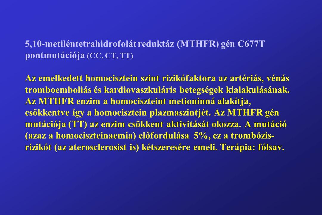 5,10-metiléntetrahidrofolát reduktáz (MTHFR) gén C677T pontmutációja (CC, CT, TT) Az emelkedett homocisztein szint rizikófaktora az artériás, vénás tromboemboliás és kardiovaszkuláris betegségek kialakulásának.