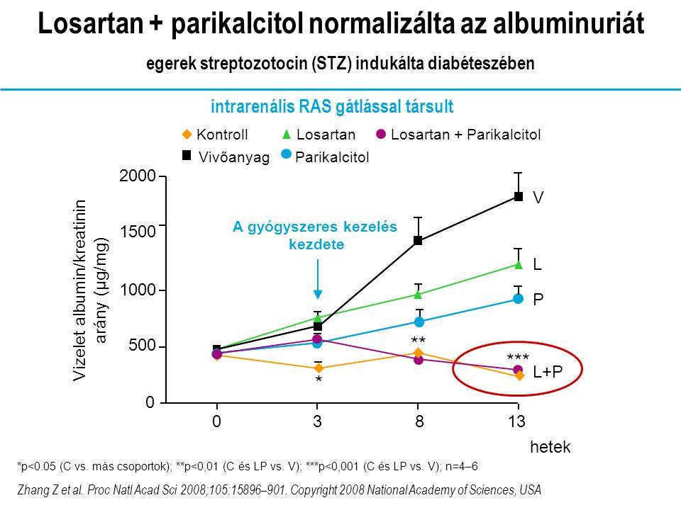 KontrollVivőanyagLosartanParikalcitol Losartan + Parikalcitol CVL PL+P 0 0.5 1 1.5 2 2.5 3 Glomeruscleroticus index *** ***p<0,001 (vs.