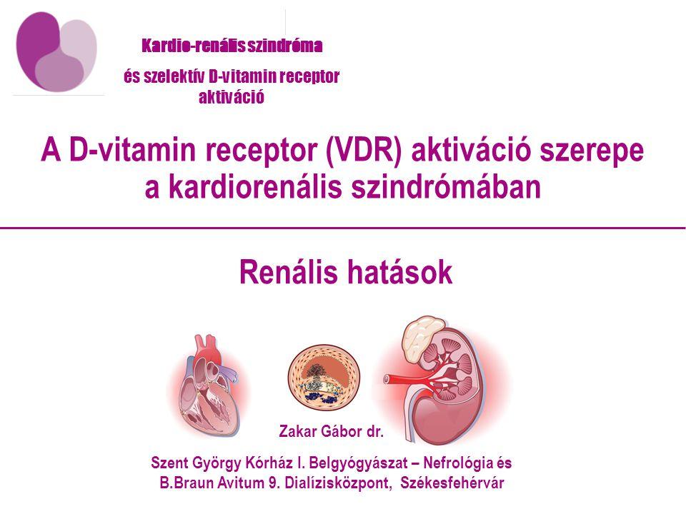 Kardio-renális szindróma és szelektív D-vitamin receptor aktiváció Renális hatások A D-vitamin receptor (VDR) aktiváció szerepe a kardiorenális szindrómában Zakar Gábor dr.