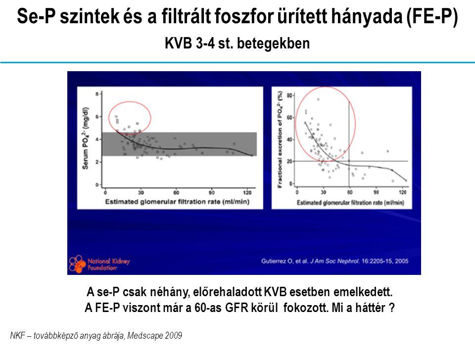 Se-P szintek és a filtrált foszfor ürített hányada (FE-P) KVB 3-4 st.