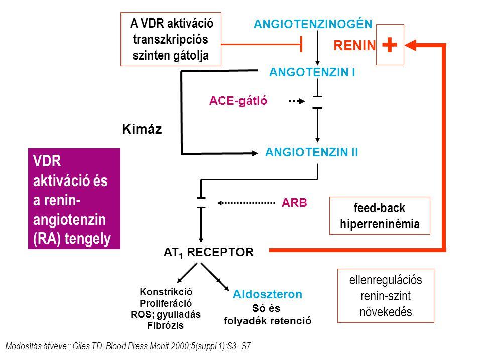 AT 1 RECEPTOR ANGOTENZIN I ANGIOTENZIN II ACE-gátló ARB Modosítás átvéve:: Giles TD.