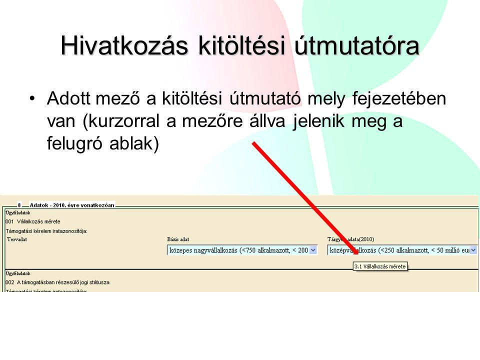 Hivatkozás kitöltési útmutatóra Adott mező a kitöltési útmutató mely fejezetében van (kurzorral a mezőre állva jelenik meg a felugró ablak)