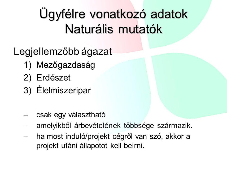Ügyfélre vonatkozó adatok Naturális mutatók Legjellemzőbb ágazat 1)Mezőgazdaság 2)Erdészet 3)Élelmiszeripar –csak egy választható –amelyikből árbevételének többsége származik.