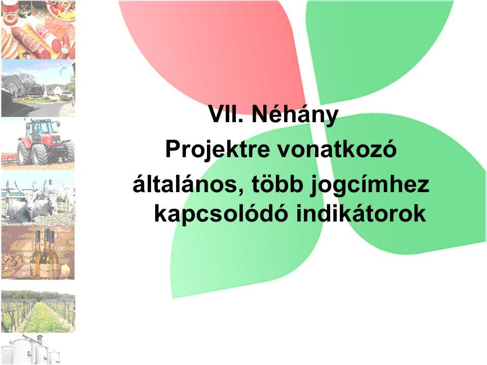 VII. Néhány Projektre vonatkozó általános, több jogcímhez kapcsolódó indikátorok