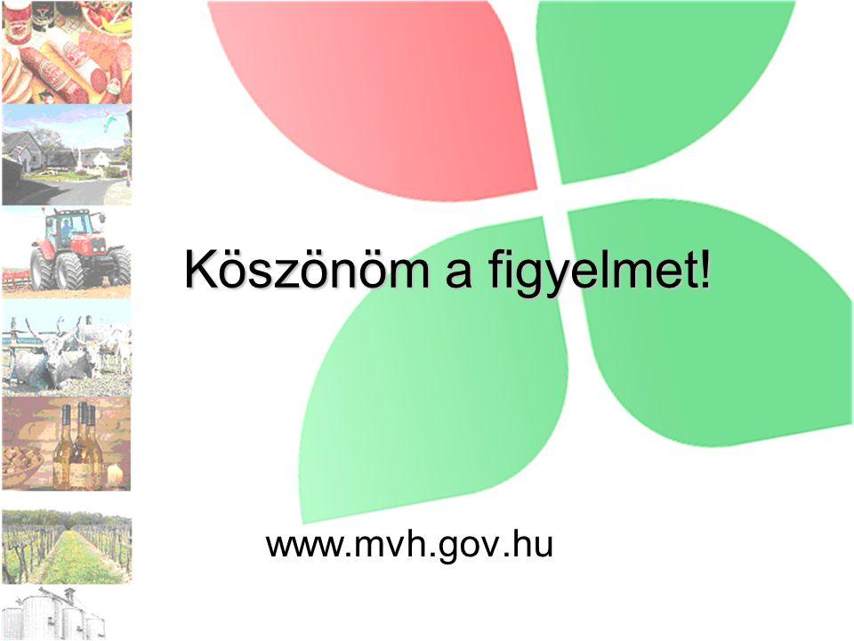 Köszönöm a figyelmet! www.mvh.gov.hu