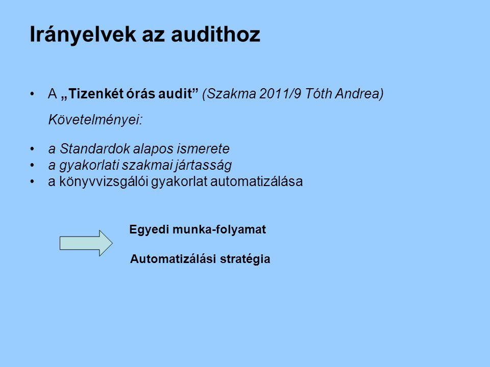 """Irányelvek az audithoz A """"Tizenkét órás audit (Szakma 2011/9 Tóth Andrea) Követelményei: a Standardok alapos ismerete a gyakorlati szakmai jártasság a könyvvizsgálói gyakorlat automatizálása Egyedi munka-folyamat Automatizálási stratégia"""