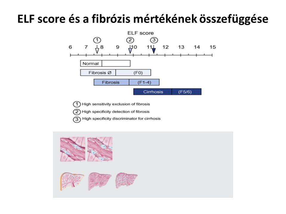 ELF score és a fibrózis mértékének összefüggése