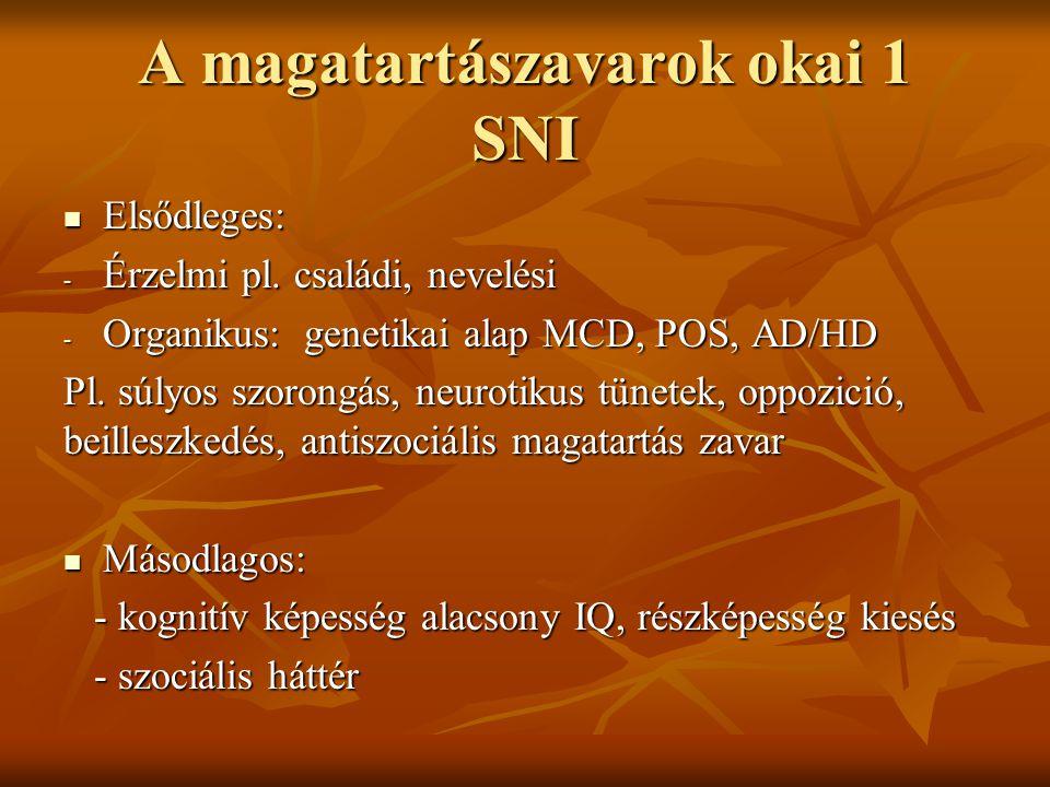 A magatartászavarok okai 1 SNI Elsődleges: Elsődleges: - Érzelmi pl.