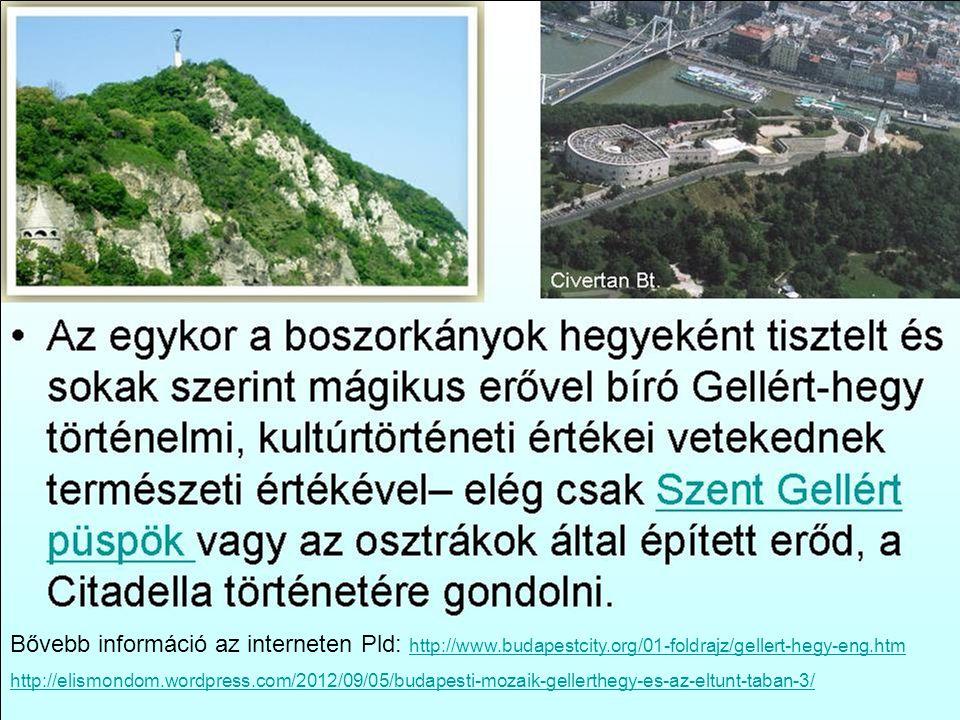 Bővebb információ az interneten Pld: http://www.budapestcity.org/01-foldrajz/gellert-hegy-eng.htm http://www.budapestcity.org/01-foldrajz/gellert-hegy-eng.htm http://elismondom.wordpress.com/2012/09/05/budapesti-mozaik-gellerthegy-es-az-eltunt-taban-3/