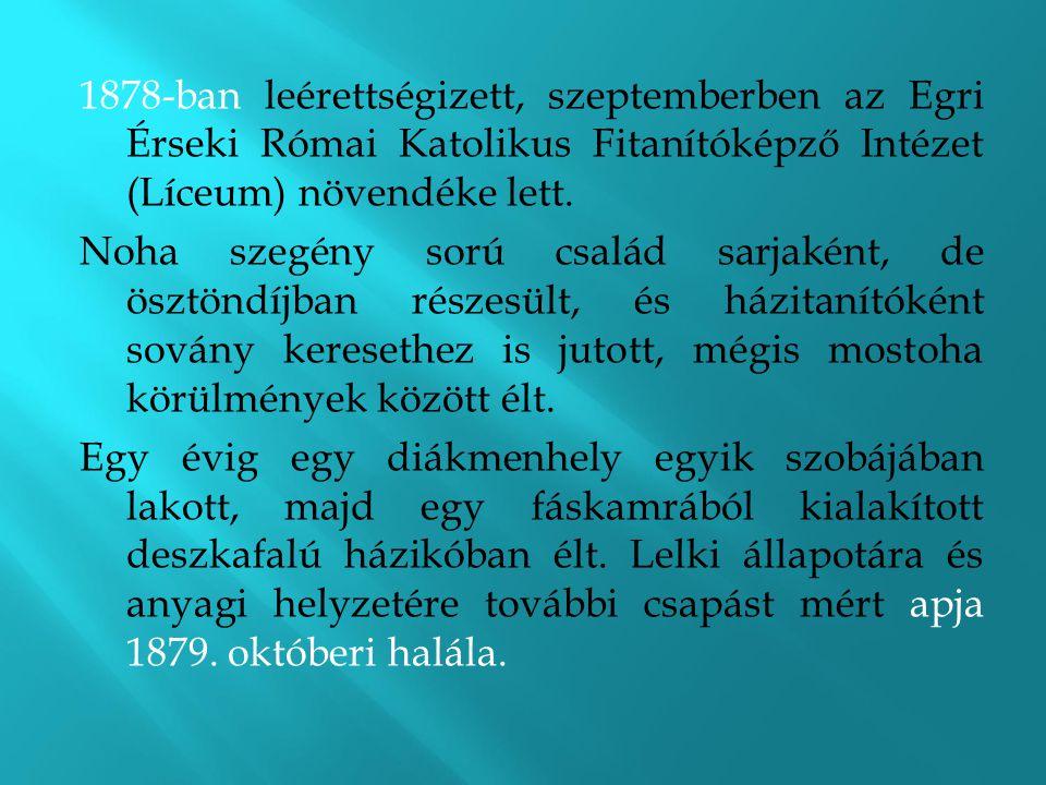 1878-ban leérettségizett, szeptemberben az Egri Érseki Római Katolikus Fitanítóképző Intézet (Líceum) növendéke lett. Noha szegény sorú család sarjaké