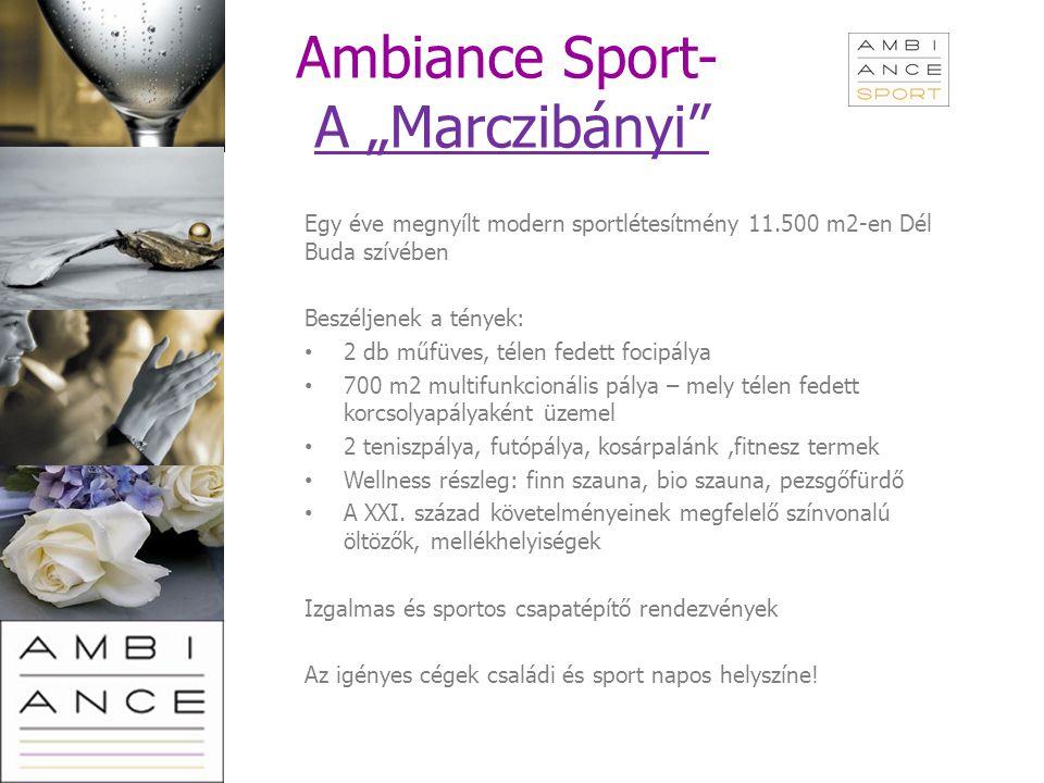 """Ambiance Sport- A """"Marczibányi""""A """"Marczibányi"""" Egy éve megnyílt modern sportlétesítmény 11.500 m2-en Dél Buda szívében Beszéljenek a tények: 2 db műfü"""