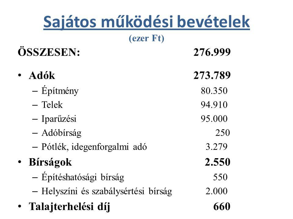 Egyéb bevételek (ezer Ft) ÖSSZESEN: 219.820 2010-es működési pénzmaradvány 67.767 2010-es felhalmozási pénzmaradvány 137.060 Német Nemzetiségi Önkormányzat bevétele2.210 Kp-i költségvetésből előző évekre5.591 Vis maior2.430 Egyéb (Remeteszőlőstől, igazgatási bev.