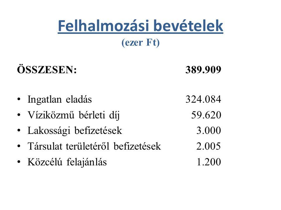 Felhalmozási bevételek (ezer Ft) ÖSSZESEN:389.909 Ingatlan eladás324.084 Víziközmű bérleti díj 59.620 Lakossági befizetések 3.000 Társulat területéről befizetések 2.005 Közcélú felajánlás 1.200