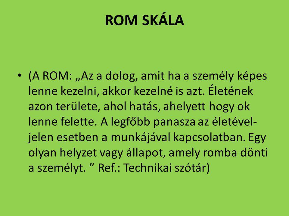 """ROM SKÁLA (A ROM: """"Az a dolog, amit ha a személy képes lenne kezelni, akkor kezelné is azt. Életének azon területe, ahol hatás, ahelyett hogy ok lenne"""
