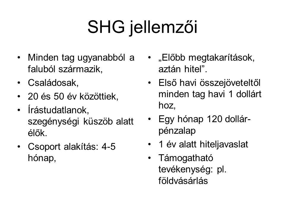 SHG jellemzői Minden tag ugyanabból a faluból származik, Családosak, 20 és 50 év közöttiek, Írástudatlanok, szegénységi küszöb alatt élők. Csoport ala
