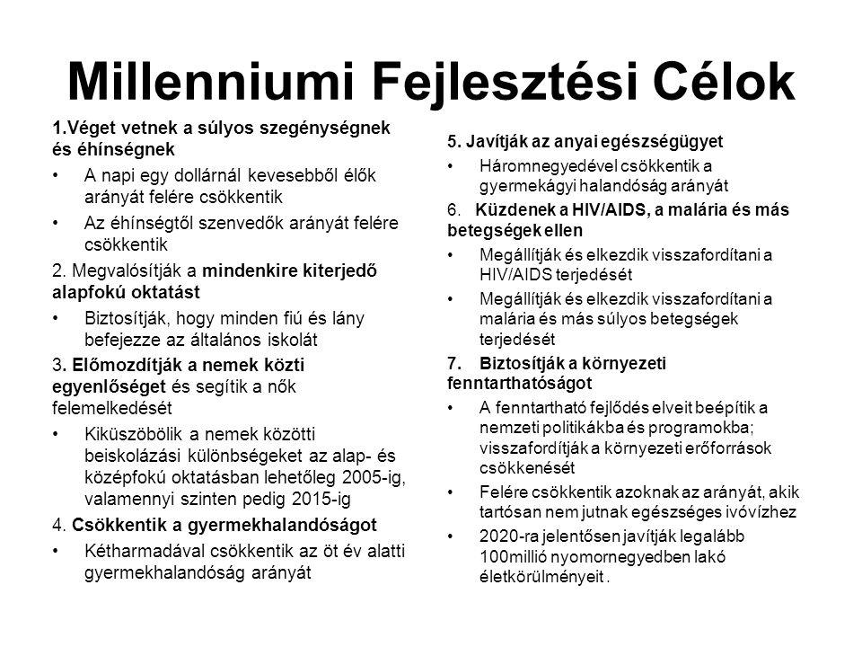 Millenniumi Fejlesztési Célok 8.