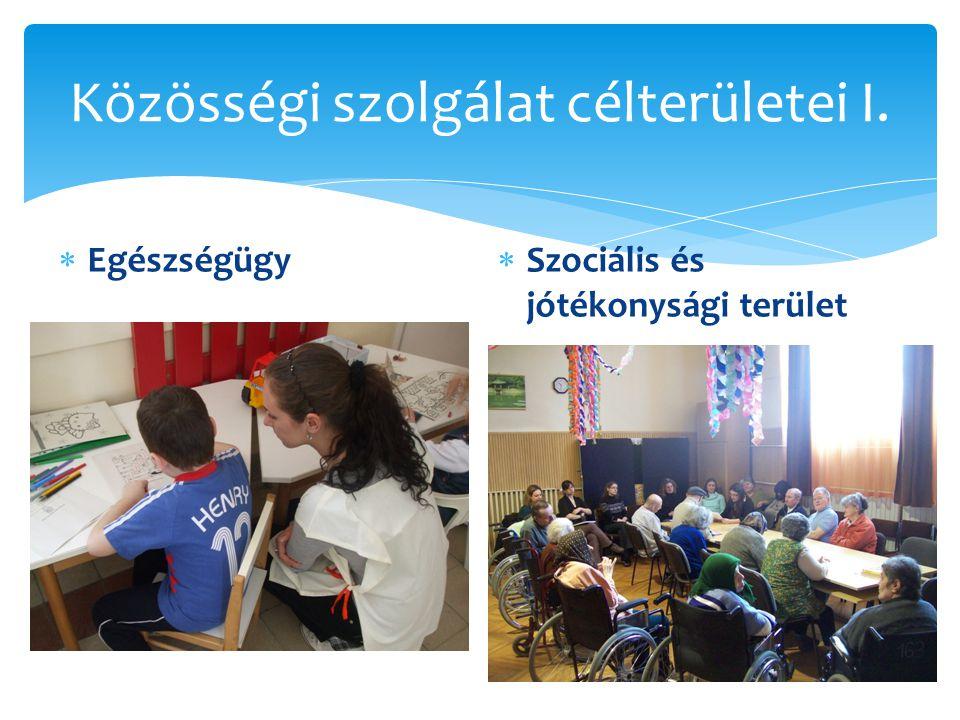 Közösségi szolgálat célterületei I.  Egészségügy  Szociális és jótékonysági terület