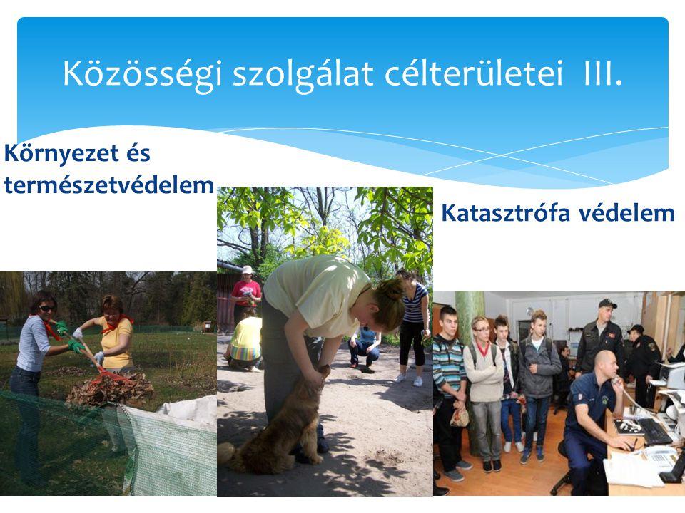 Közösségi szolgálat célterületei III.  Környezet és természetvédelem  Katasztrófa védelem