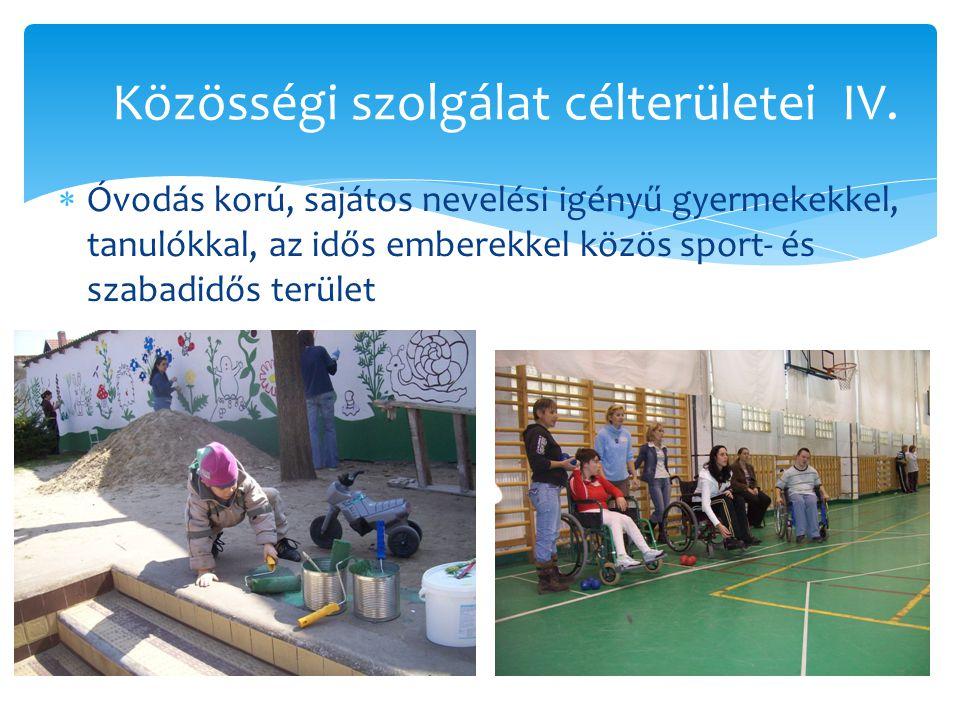  Óvodás korú, sajátos nevelési igényű gyermekekkel, tanulókkal, az idős emberekkel közös sport- és szabadidős terület Közösségi szolgálat célterülete