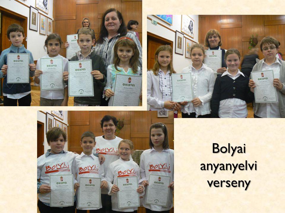 Bolyai anyanyelvi verseny
