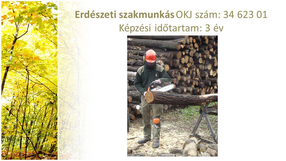 Erdészeti szakmunkás OKJ szám: 34 623 01 Képzési időtartam: 3 év