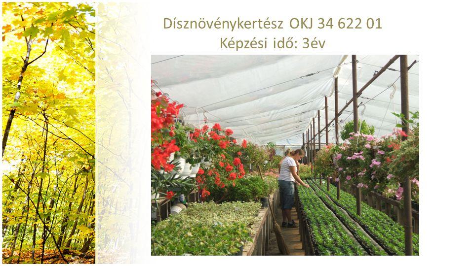 Dísznövénykertész OKJ 34 622 01 Képzési idő: 3év