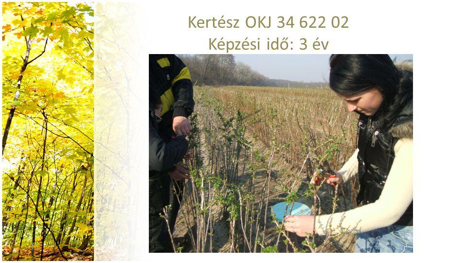 Kertész OKJ 34 622 02 Képzési idő: 3 év