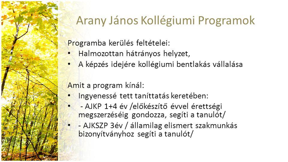 Arany János Kollégiumi Programok Programba kerülés feltételei: Halmozottan hátrányos helyzet, A képzés idejére kollégiumi bentlakás vállalása Amit a p