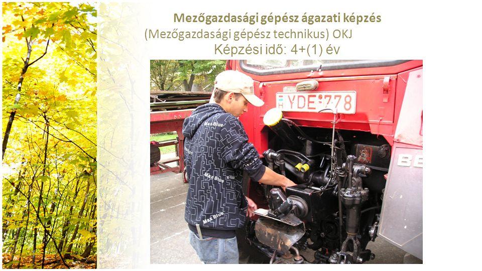 Mezőgazdasági gépész ágazati képzés (Mezőgazdasági gépész technikus) OKJ 54 521 05 Képzési idő: 4+(1) év