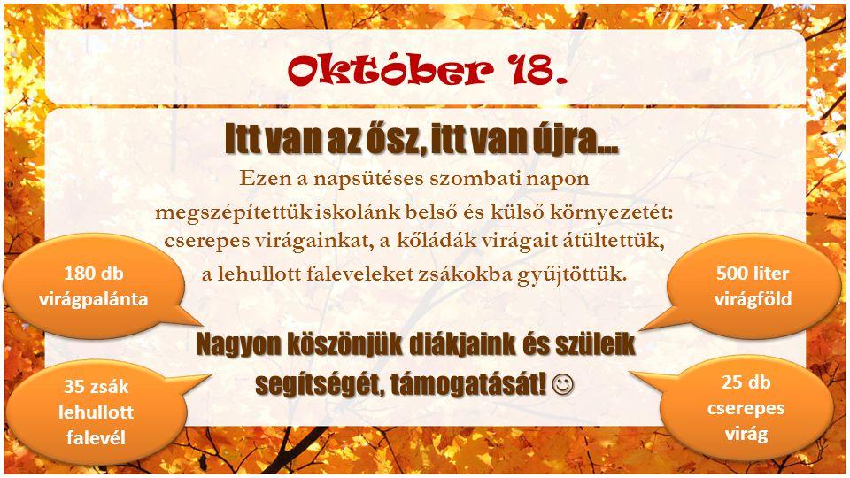 Október 18. Itt van az ősz, itt van újra… Ezen a napsütéses szombati napon megszépítettük iskolánk belső és külső környezetét: cserepes virágainkat, a