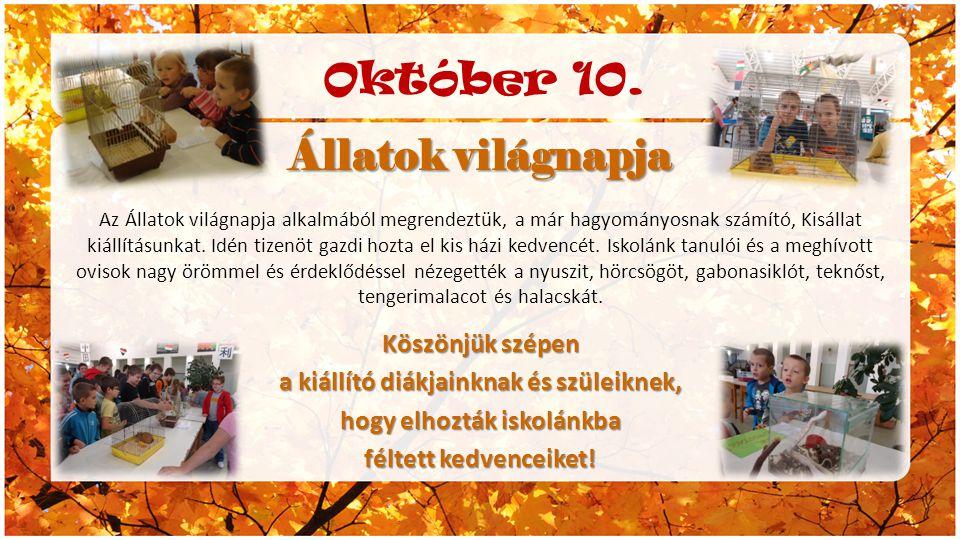 Október 10. Állatok világnapja Az Állatok világnapja alkalmából megrendeztük, a már hagyományosnak számító, Kisállat kiállításunkat. Idén tizenöt gazd