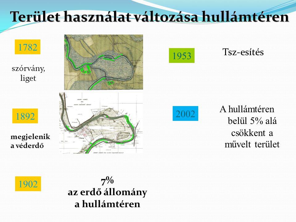 Terület használat változása hullámtéren 1782 szórvány, liget 1892 A hullámtéren belül 5% alá csökkent a művelt terület megjelenik a véderdő 1953 Tsz-e