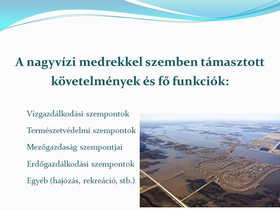 A nagyvízi medrekkel szemben támasztott követelmények és fő funkciók: Vízgazdálkodási szempontok Természetvédelmi szempontok Mezőgazdaság szempontjai