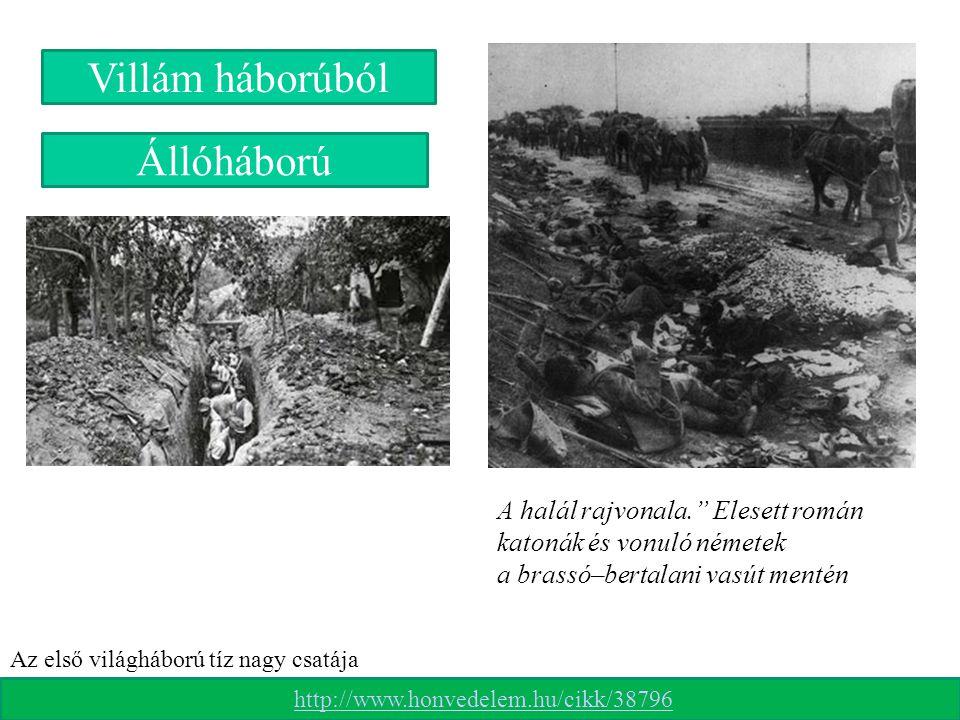 """A halál rajvonala."""" Elesett román katonák és vonuló németek a brassó–bertalani vasút mentén Állóháború Villám háborúból http://www.honvedelem.hu/cikk/"""