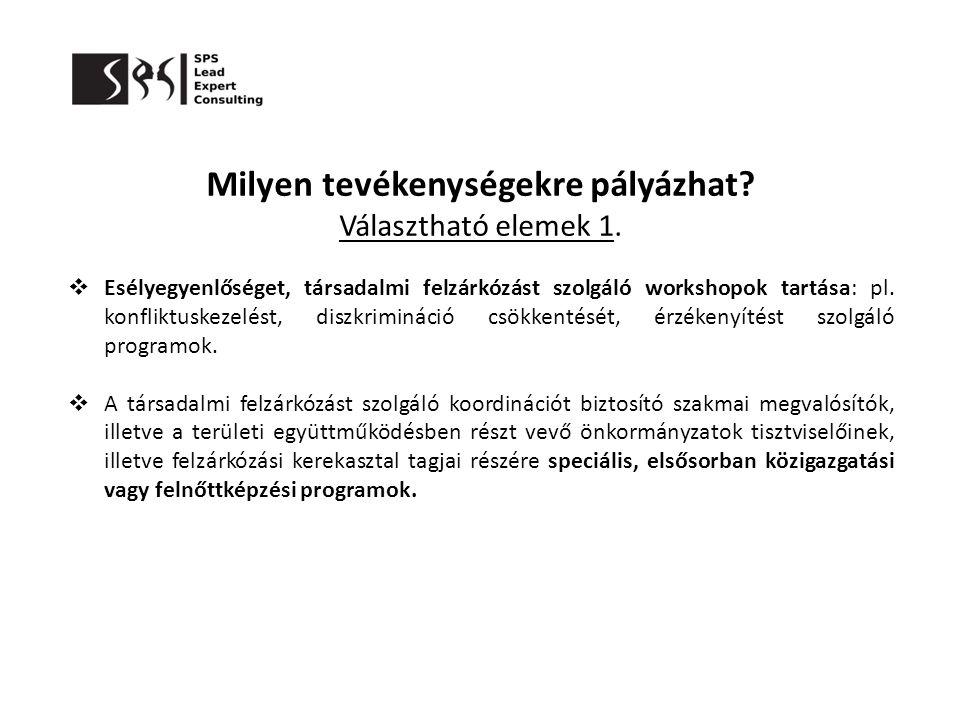 Milyen tevékenységekre pályázhat? Választható elemek 1.  Esélyegyenlőséget, társadalmi felzárkózást szolgáló workshopok tartása: pl. konfliktuskezelé
