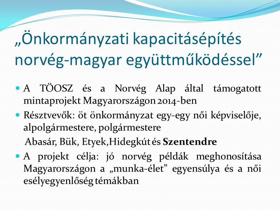 """""""Önkormányzati kapacitásépítés norvég-magyar együttműködéssel"""" A TÖOSZ és a Norvég Alap által támogatott mintaprojekt Magyarországon 2014-ben Résztvev"""