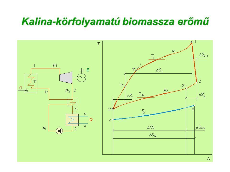 Kalina-körfolyamatú biomassza erőmű