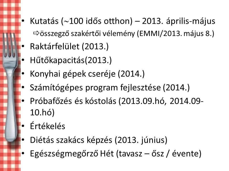 Kutatás (  100 idős otthon) – 2013.április-május  összegző szakértői vélemény (EMMI/2013.