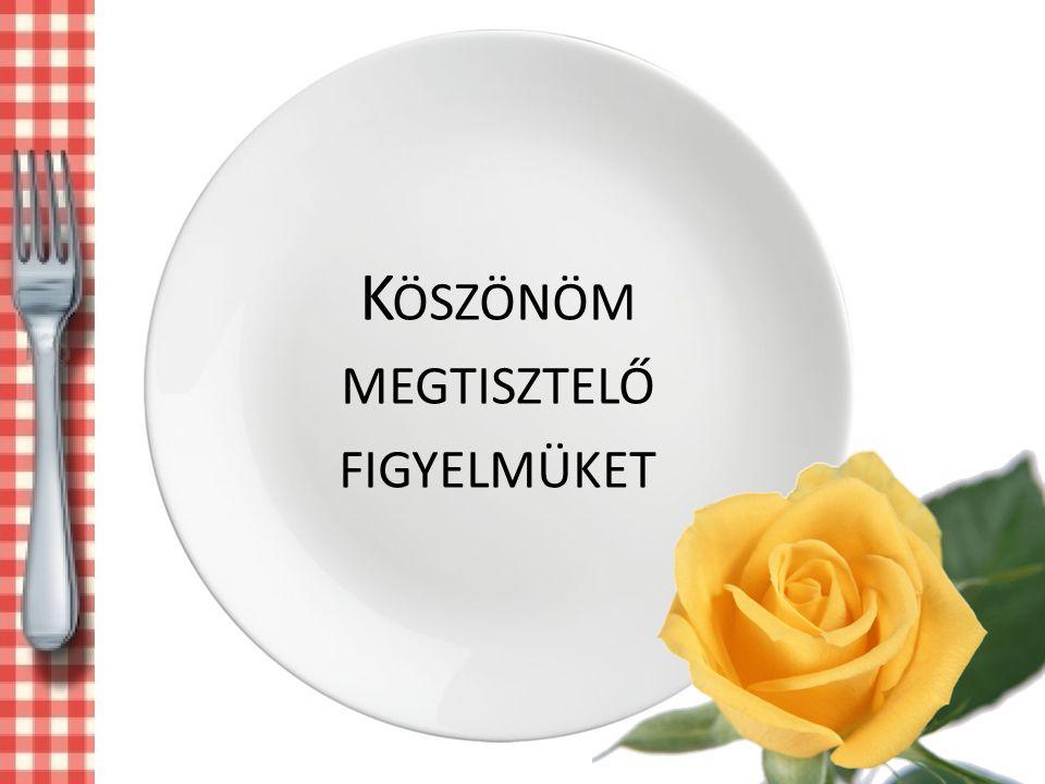 K ÖSZÖNÖM MEGTISZTELŐ FIGYELMÜKET