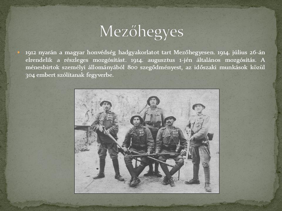 1912 nyarán a magyar honvédség hadgyakorlatot tart Mezőhegyesen. 1914. július 26-án elrendelik a részleges mozgósítást. 1914. augusztus 1-jén általáno