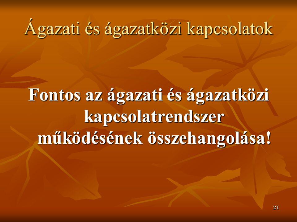 21 Ágazati és ágazatközi kapcsolatok Fontos az ágazati és ágazatközi kapcsolatrendszer működésének összehangolása!