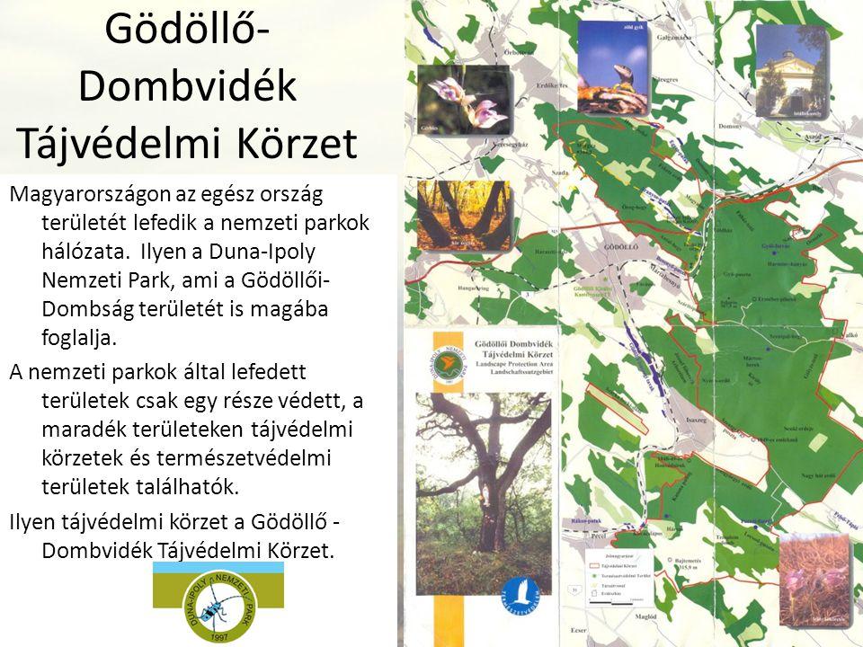 Gödöllő- Dombvidék Tájvédelmi Körzet Magyarországon az egész ország területét lefedik a nemzeti parkok hálózata. Ilyen a Duna-Ipoly Nemzeti Park, ami
