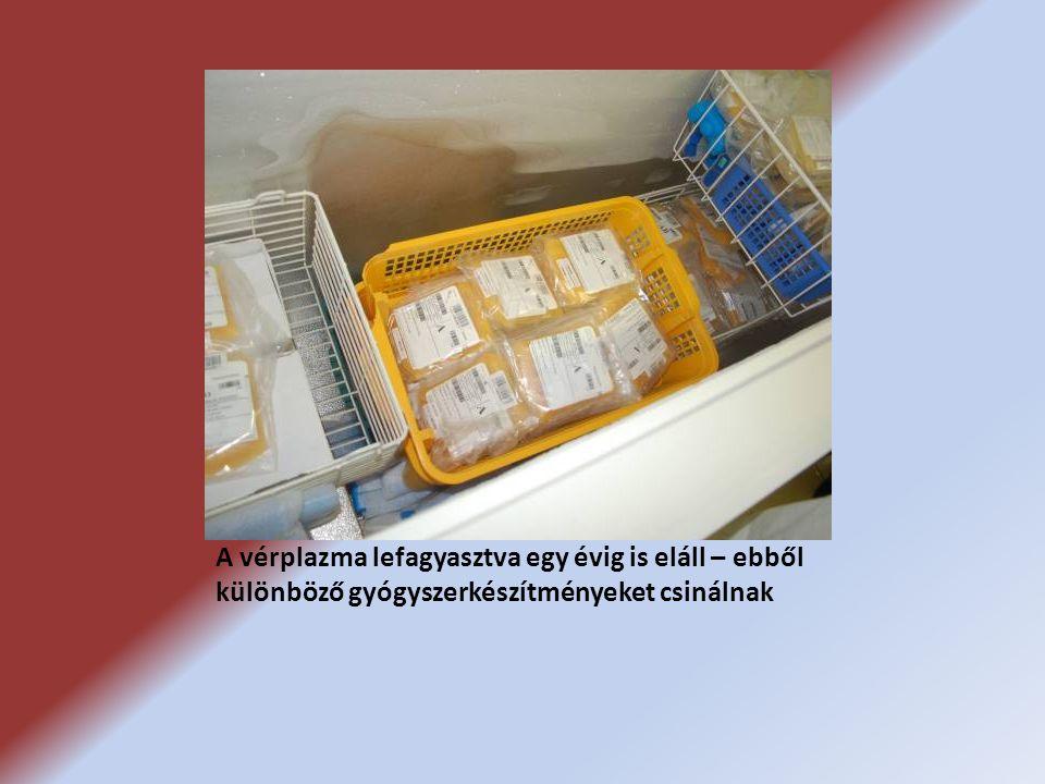 A vérplazma lefagyasztva egy évig is eláll – ebből különböző gyógyszerkészítményeket csinálnak