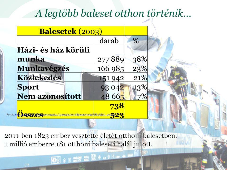 A legtöbb baleset otthon történik… Balesetek (2003) darab% Házi- és ház körüli munka277 88938% Munkavégzés166 98523% Közlekedés151 94221% Sport93 04213% Nem azonosított48 6657% Összes 738 523 Forrás: http://users.atw.hu/balesetmegeloz/strategia.html#Baleset-megel%F5z%E9si_politika (2003)http://users.atw.hu/balesetmegeloz/strategia.html#Baleset-megel%F5z%E9si_politika 2011-ben 1823 ember vesztette életét otthoni balesetben.
