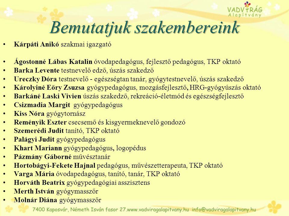 Az ügyvezetés terén legtöbb munkatársunk megváltozott munkaképességű. www.vadviragalapitvany.hu