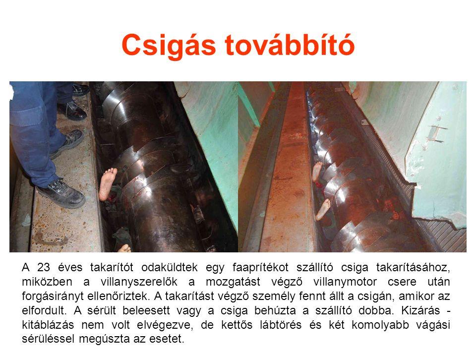 Csigás továbbító A 23 éves takarítót odaküldtek egy faaprítékot szállító csiga takarításához, miközben a villanyszerelők a mozgatást végző villanymoto