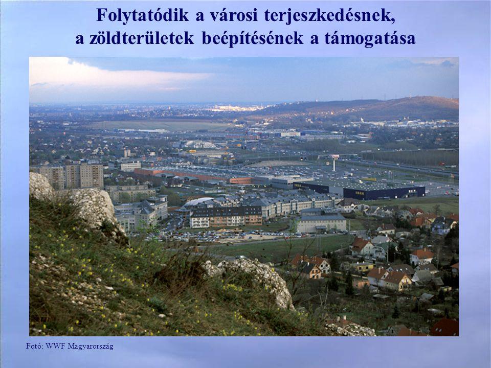 Folytatódik a városi terjeszkedésnek, a zöldterületek beépítésének a támogatása Fotó: WWF Magyarország