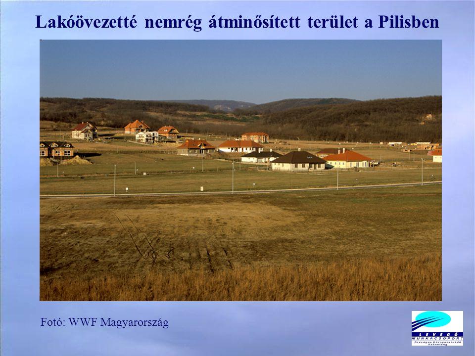 Fotó: WWF Magyarország Lakóövezetté nemrég átminősített terület a Pilisben