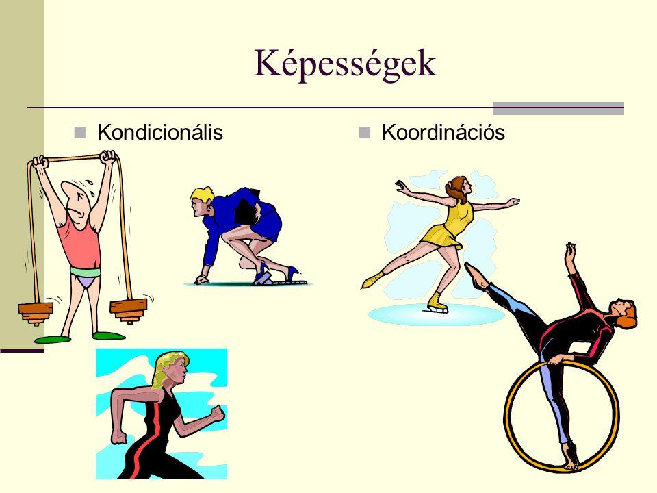 Kondicionális képességek Erőnléten a sportoló fizikai, pszichikai összetevőjét értjük, amelyet mindenekelőtt az erő állóképesség, és gyorsaság, a velük kapcsolatos pszichikai tulajdonságok határoznak meg.