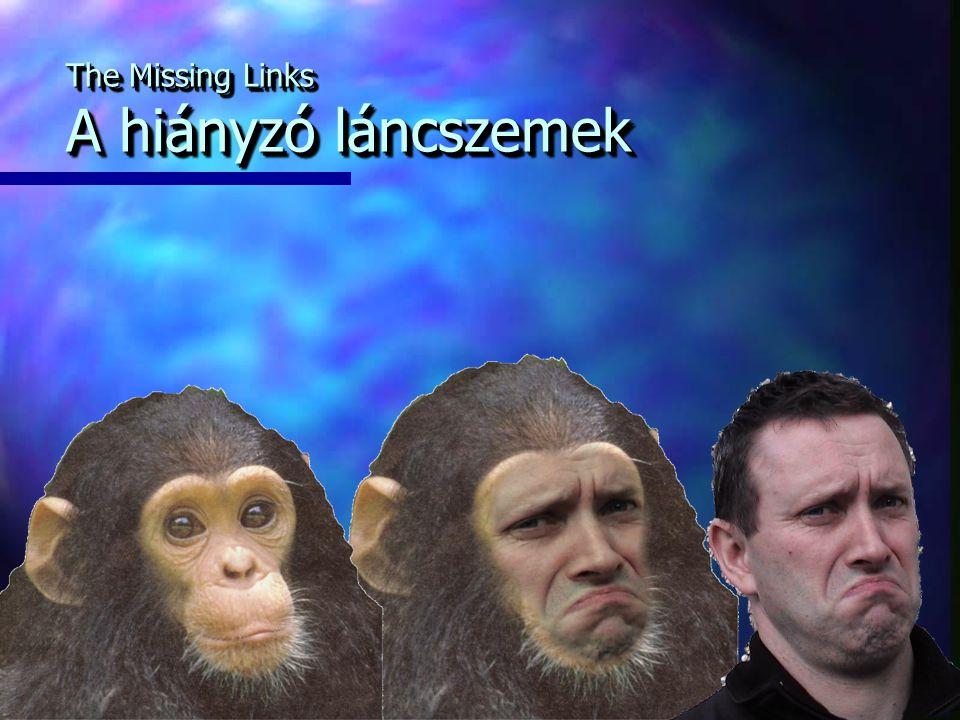 The Missing Links A hiányzó láncszemek